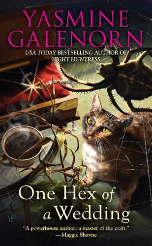 9780425211175: One Hex of a Wedding (Chintz 'n China Series)