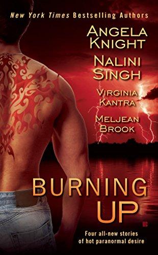 9780425235959: Burning Up (Berkley Sensation)