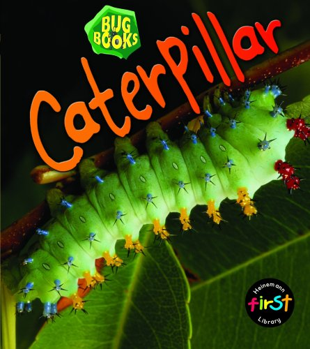 9780431018386: Caterpillar (Bug Books) (Bug Books)