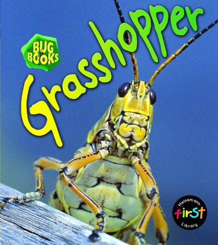 9780431018423: Grasshopper (Bug Books) (Bug Books)