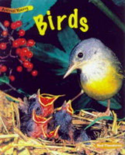 9780431030784: Birds (Animal Young)