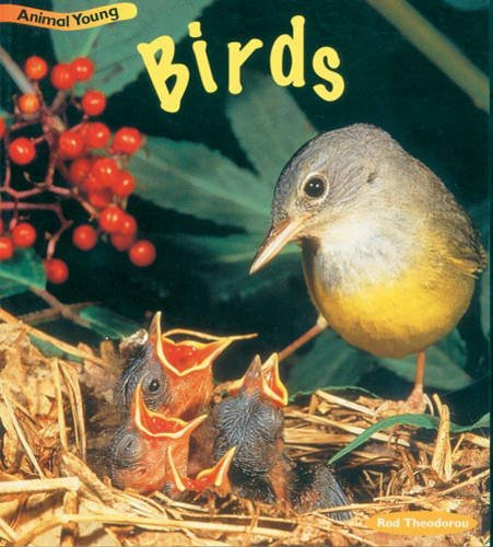 9780431030791: Birds (Animal Young) (Animal Young)