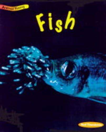 9780431030807: Fish (Animal Young)
