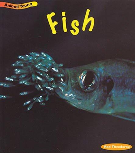 9780431030814: Fish (Animal Young) (Animal Young)