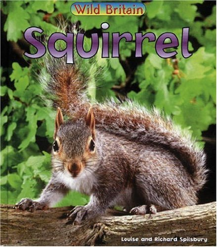 9780431039299: Squirell (Wild Britain: Animals)