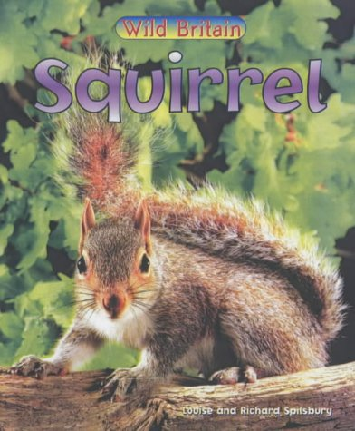 9780431039367: Wild Britain: Squirrel
