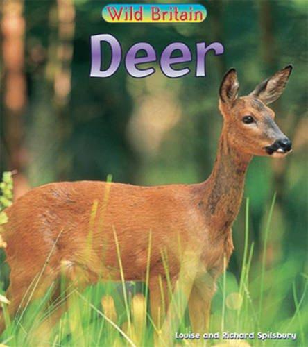 9780431039831: Wild Britain: Deer Hardback