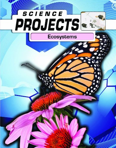 9780431040462: Ecosystems (Science Projects)