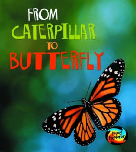 9780431050720: From Caterpillar to Butterfly (Young Explorer: How Living Things Grow) (Young Explorer: How Living Things Grow)