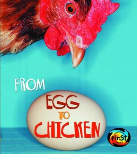 9780431050850: From Egg to Chicken (Space Explorer)