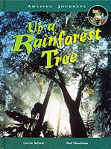 9780431055473: Amazing Journeys: Up a Rainforest Tree (Cased)