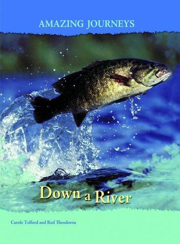 9780431056555: Down a River (Amazing Journeys) (Amazing Journeys)