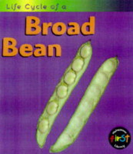 9780431083636: Life Cycle of a Broad Bean (Life Cycle of A...)