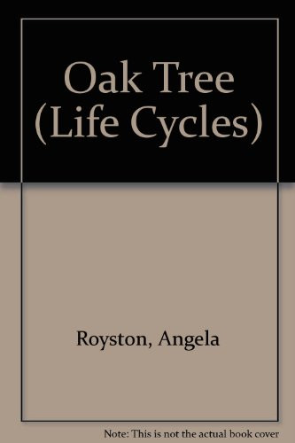 9780431083919: Life Cycle of an Oak Tree (Life Cycle of A...)