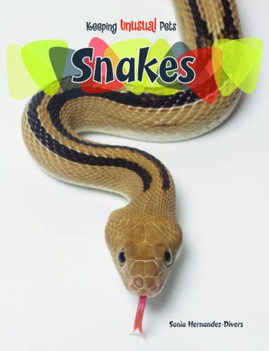 9780431125619: Snakes (Keeping Unusual Pets)