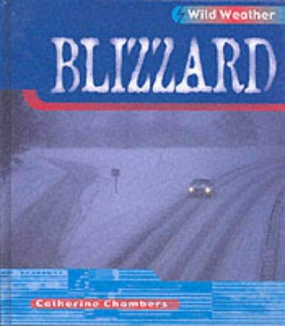 9780431150628: Wild Weather: Blizzard Hardback