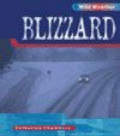 9780431150727: Blizzard (Wild Weather)
