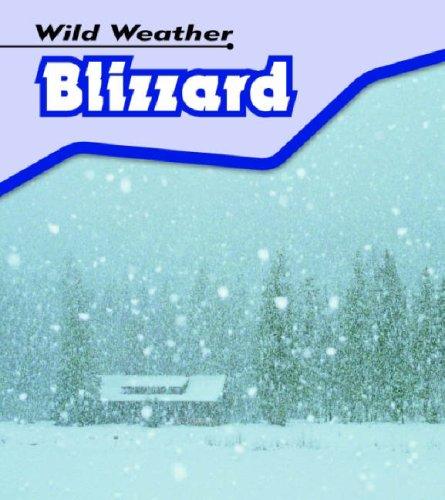 9780431150826: Blizzard (Wild Weather)