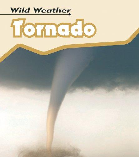 9780431150888: Tornado (Wild Weather)