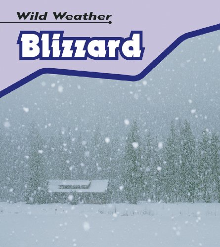 9780431150925: Blizzard (Wild Weather) (Wild Weather)
