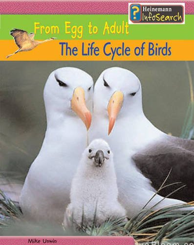 9780431168708: The Life Cycle of Birds: From Egg to Adult (Heinemann Infosearch): From Egg to Adult (Heinemann Infosearch)