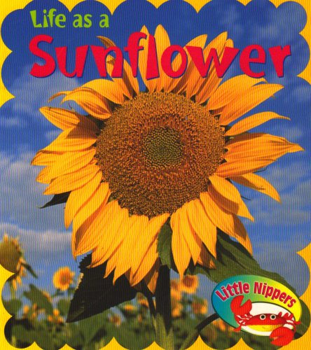 Life as a Sunflower (Little Nippers: Life: Parker, Victoria