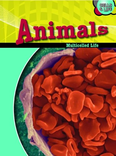 9780431174709: Animals: Multicelled Life (Cells & Life)