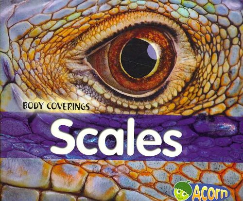 9780431182858: Scales (Body Coverings)
