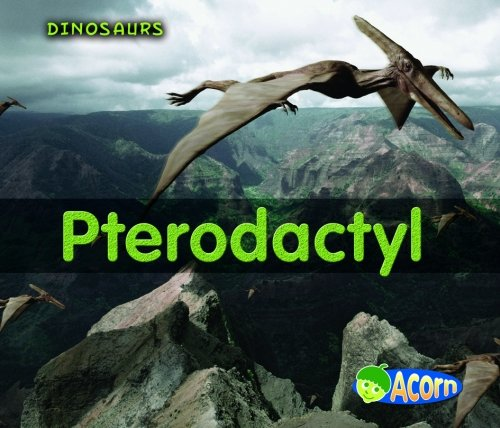 9780431184562: Pterodactyl (Acorn: All About Dinosaurs)