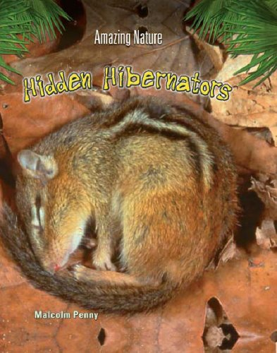 9780431185736: Hidden Hibernators (Amazing Nature)