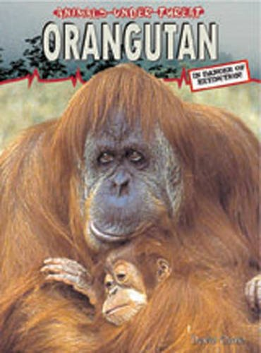 9780431189079: Animals Under Threat: Orangutan Hardback