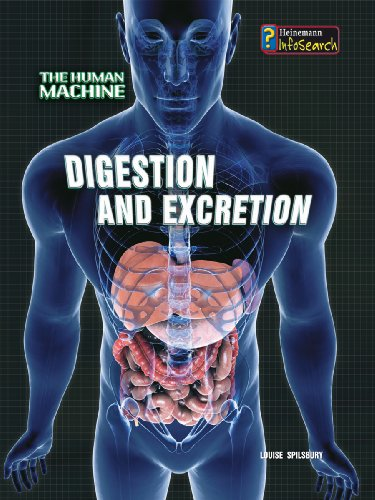 9780431192048: Digestion and Excretion (InfoSearch: The Human Machine)