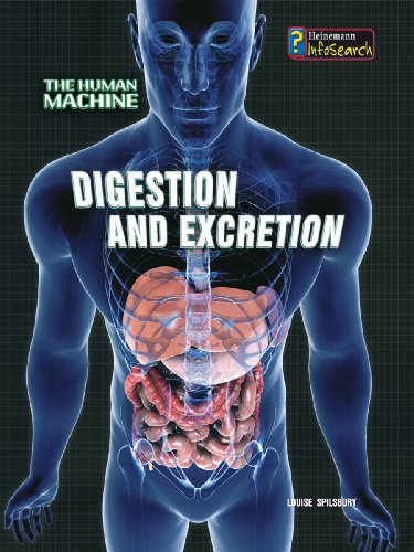 9780431192116: Digestion and Excretion (InfoSearch: The Human Machine)