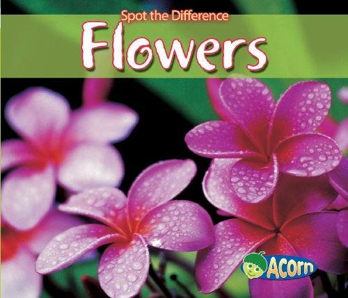 9780431192314: Flowers (Acorn: Spot the Difference)