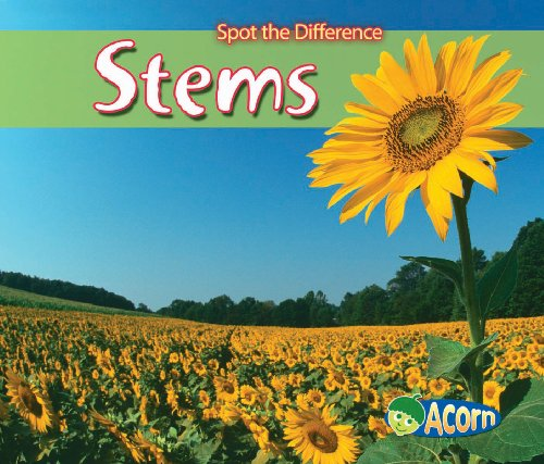 9780431192369: Stems (Acorn: Spot the Difference)