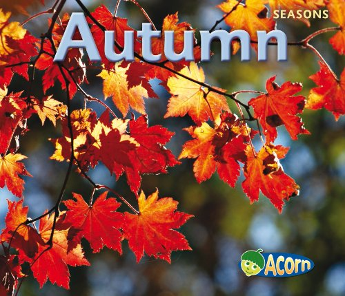 9780431192802: Autumn (Acorn: Seasons)