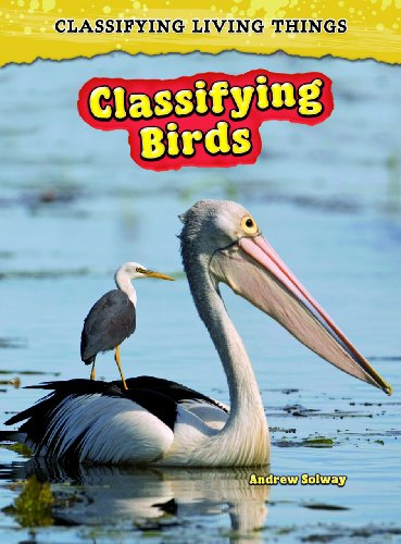 9780431193762: Classifying Birds (Classifying Living Things)