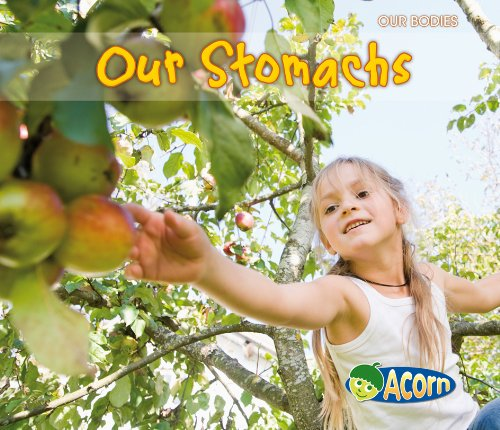 9780431195162: Our Stomachs (Acorn: Our Bodies)