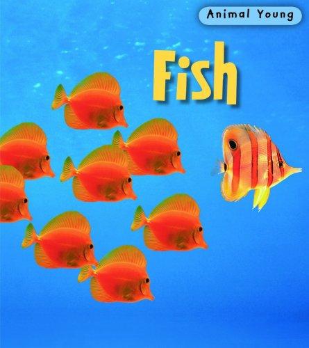 9780431932347: Fish (Animal Young)
