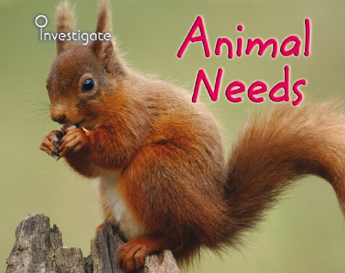 9780431932927: Animal Needs (Investigate!)