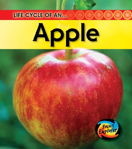 9780431999463: Life Cycle of an Apple (Young Explorer: Life Cycles)