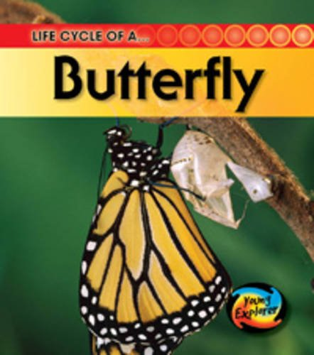9780431999654: Life Cycle of a Butterfly (Young Explorer: Life Cycles)
