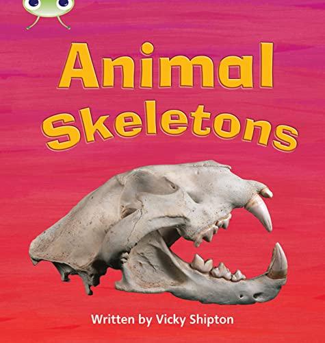 9780433019527: Animal Skeletons: Non-Fiction Set 17 (Phonics Bug)