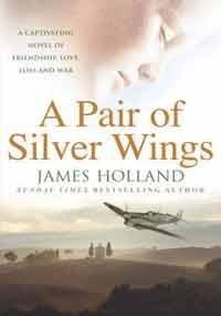 9780434010141: Pair of Silver Wings