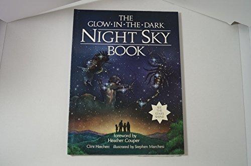 9780434942244: Glow-in-the-dark-night-sky Book