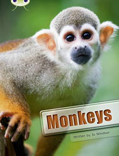 BC NF White A/2A Monkeys (BUG CLUB): Windsor, Jo