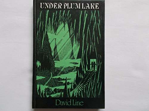 9780435122638: Under Plum Lake Line NW 263