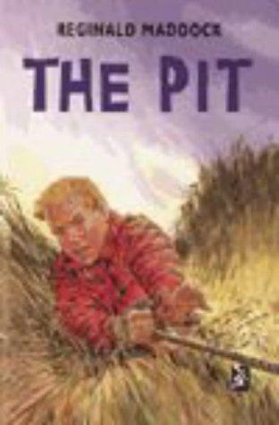 9780435124755: The Pit (New Windmills)