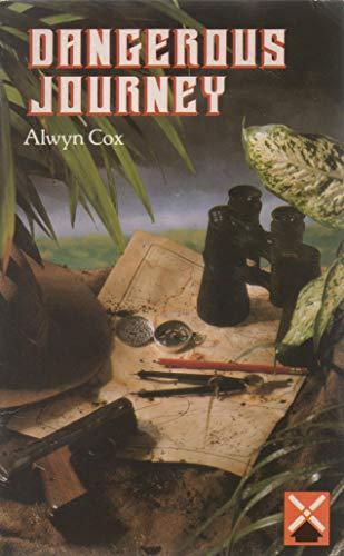 9780435270216: Dangerous Journey (Guided Reader)