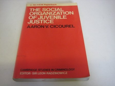 9780435821708: Social Organization of Juvenile Justice
